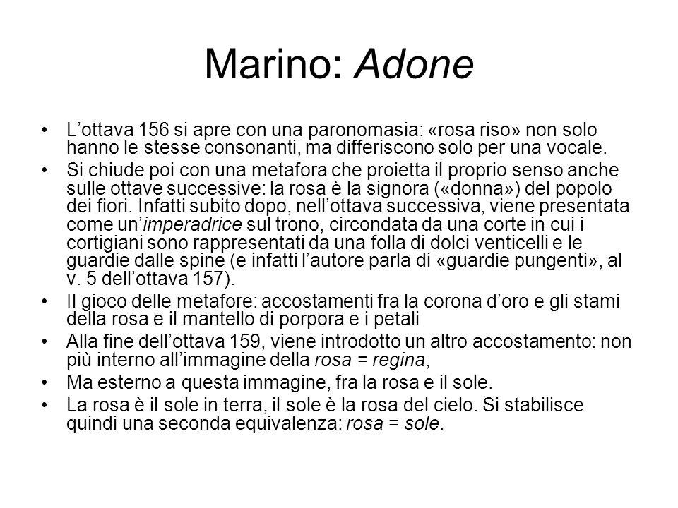 Marino: Adone L'ottava 156 si apre con una paronomasia: «rosa riso» non solo hanno le stesse consonanti, ma differiscono solo per una vocale.