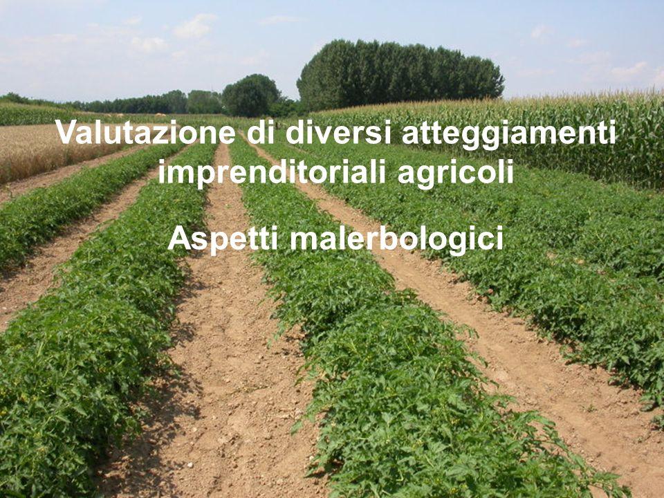 Valutazione di diversi atteggiamenti imprenditoriali agricoli