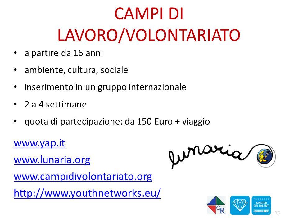 CAMPI DI LAVORO/VOLONTARIATO