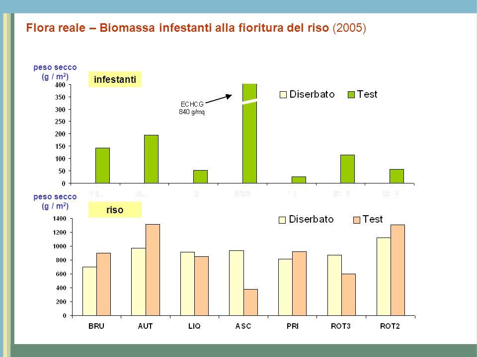 Flora reale – Biomassa infestanti alla fioritura del riso (2005)