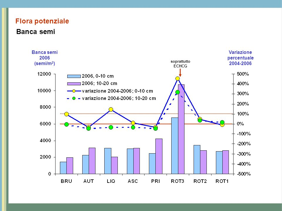 Variazione percentuale 2004-2006