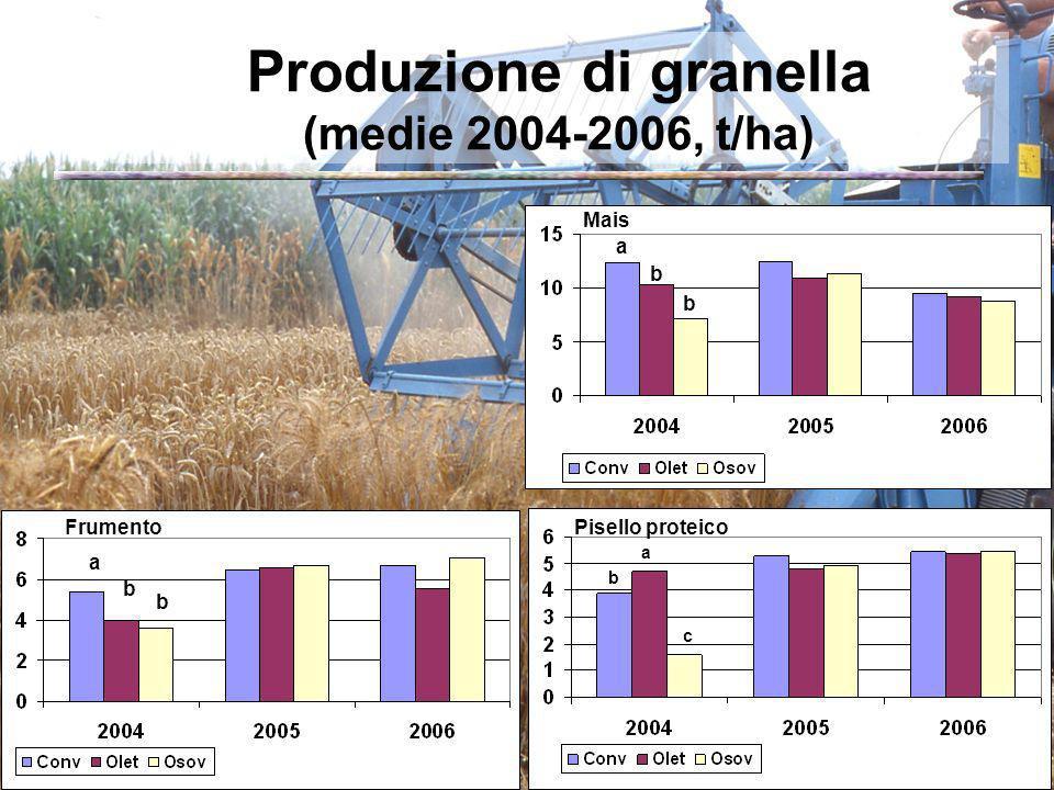 Produzione di granella (medie 2004-2006, t/ha)