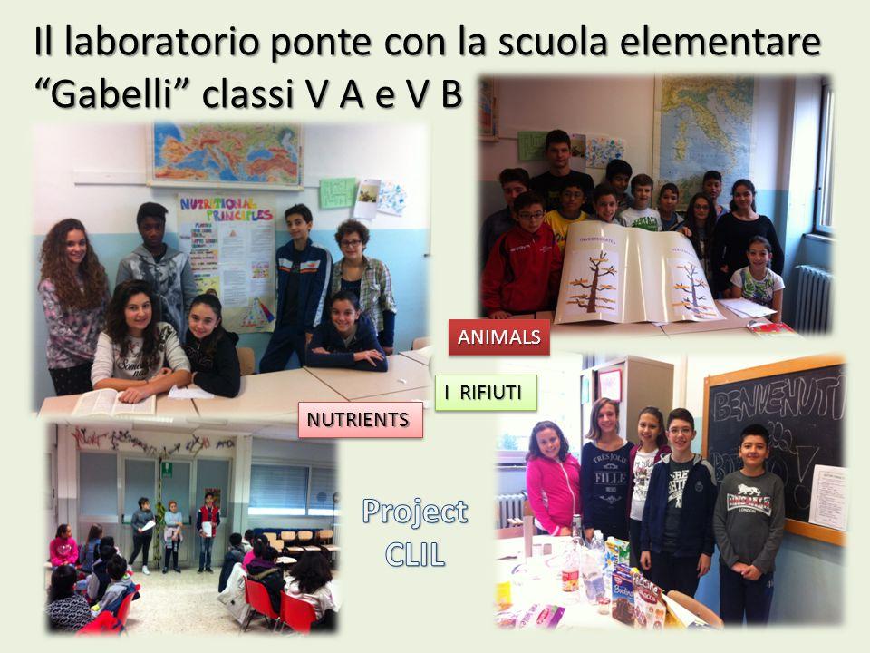 Il laboratorio ponte con la scuola elementare Gabelli classi V A e V B