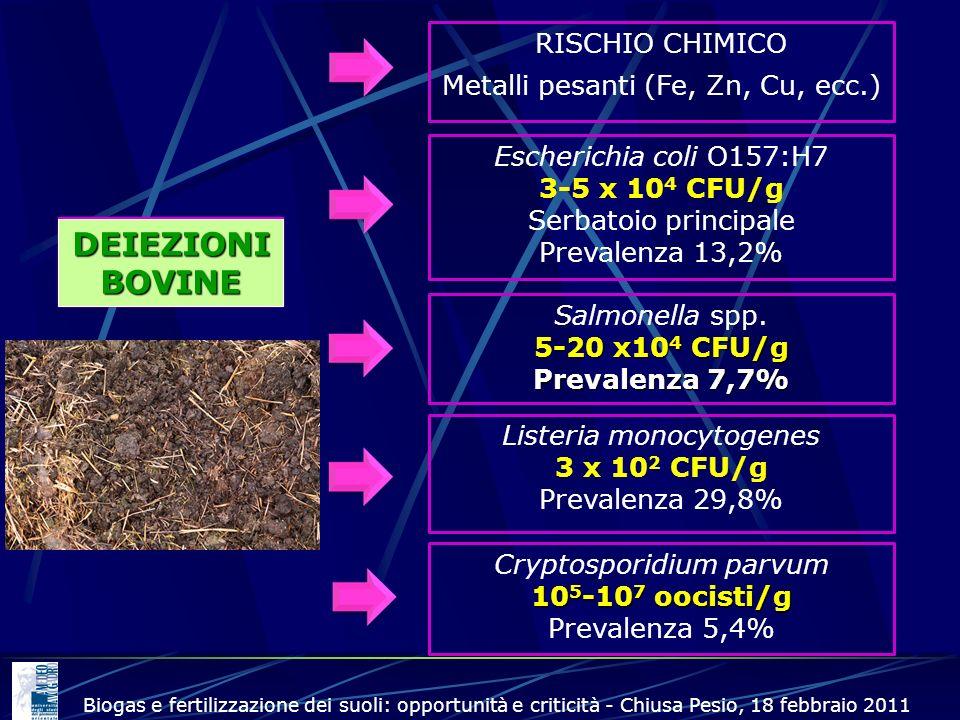 DEIEZIONI BOVINE RISCHIO CHIMICO Metalli pesanti (Fe, Zn, Cu, ecc.)