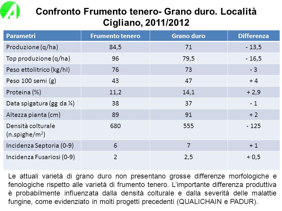 Confronto Frumento tenero- Grano duro. Località Cigliano, 2011/2012