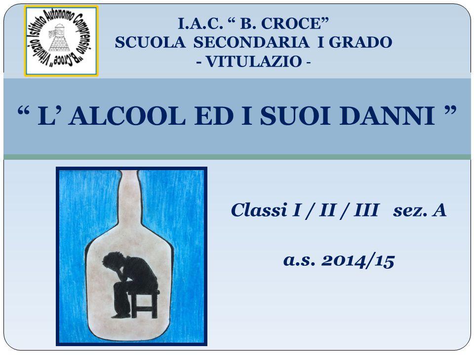 L' ALCOOL ED I SUOI DANNI