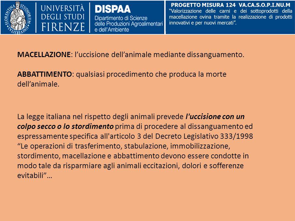 MACELLAZIONE: l'uccisione dell'animale mediante dissanguamento.