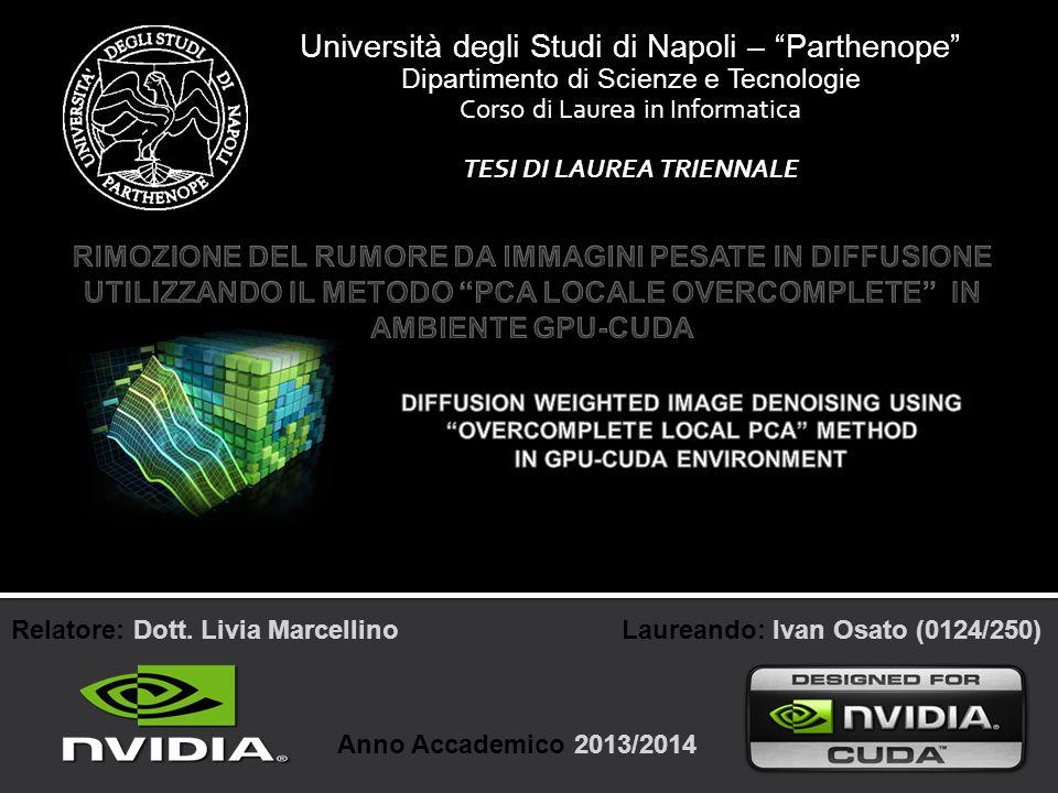TESI DI LAUREA TRIENNALE IN GPU-CUDA ENVIRONMENT