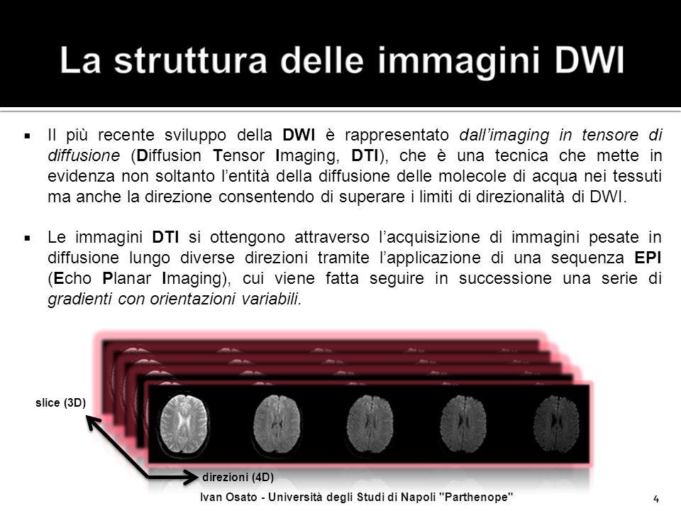 La struttura delle immagini DWI