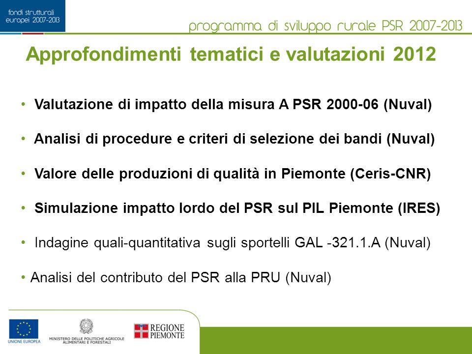 Approfondimenti tematici e valutazioni 2012