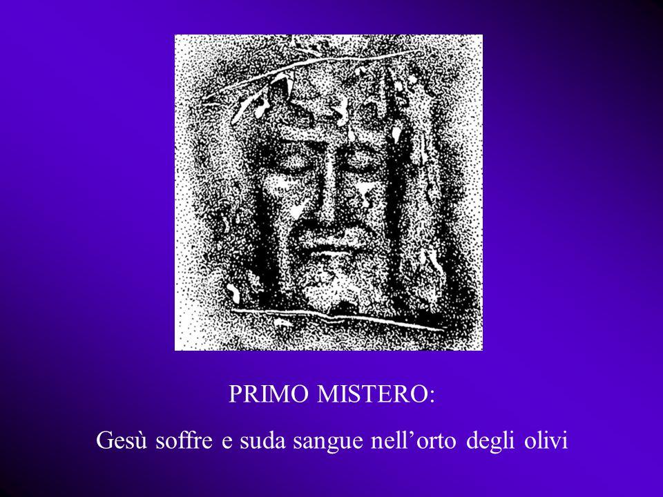 Gesù soffre e suda sangue nell'orto degli olivi