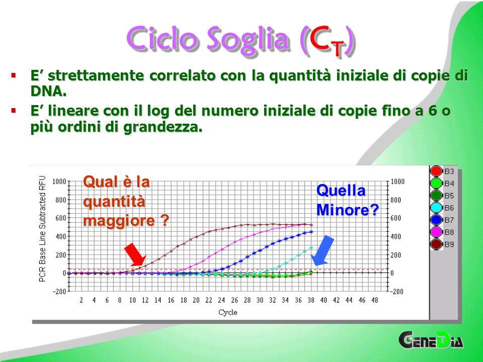 Ciclo Soglia (CT) Qual è la quantità maggiore Quella Minore