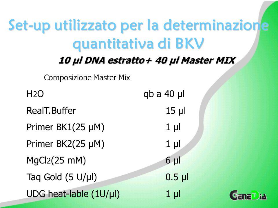 Set-up utilizzato per la determinazione quantitativa di BKV