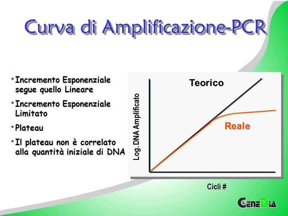 Curva di Amplificazione-PCR