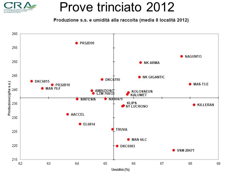 Prove trinciato 2012