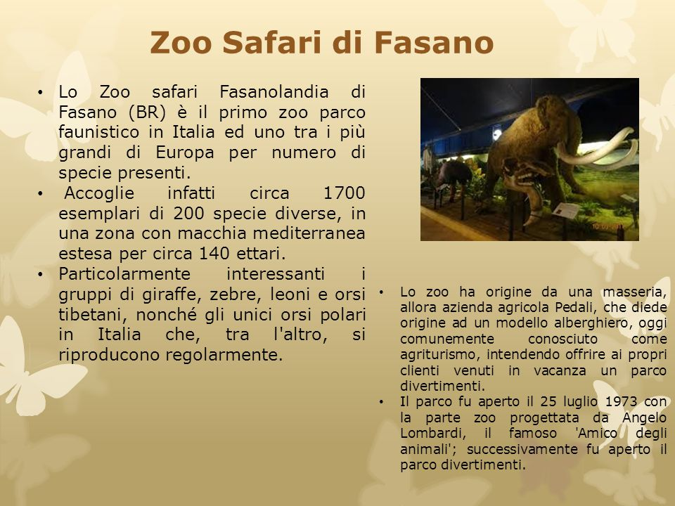 Zoo Safari di Fasano