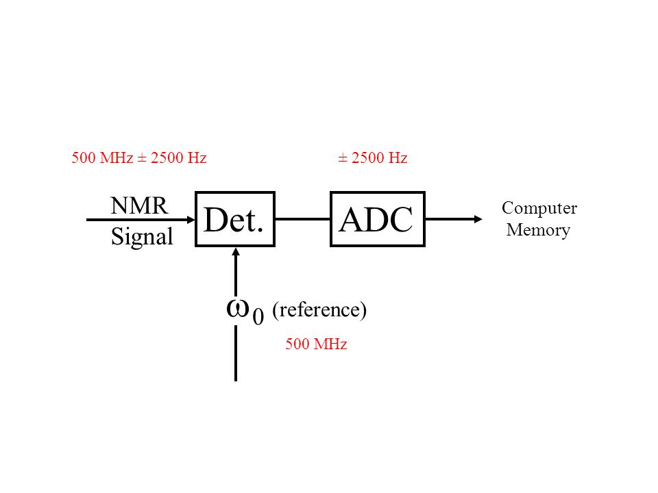 Det. ADC w0 (reference) NMR Signal Computer Memory 500 MHz ± 2500 Hz