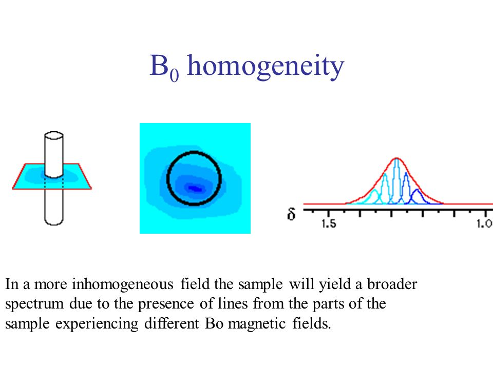 B0 homogeneity