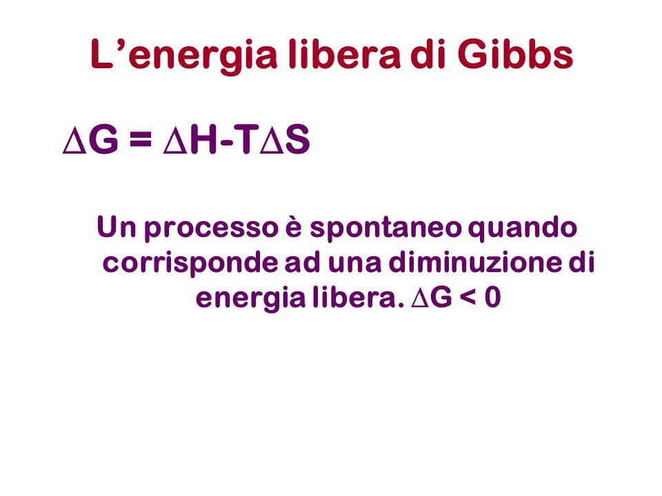 L'energia libera di Gibbs