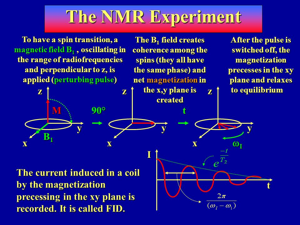 The NMR Experiment z y x M B1 90° t wI I t