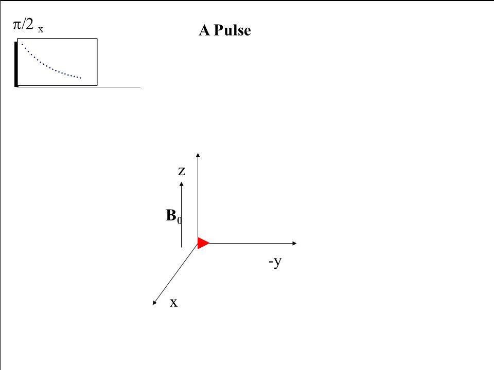 x -y z B0 A Pulse p/2 x receiver x -y z B0 A Pulse p/2 x receiver x -y