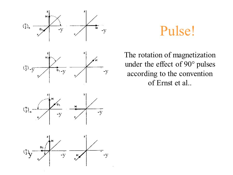 Pulse! -y. -y. The rotation of magnetization under the effect of 90° pulses according to the convention of Ernst et al..