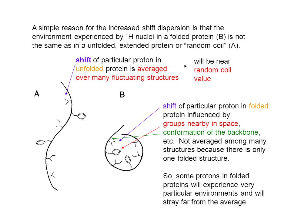 A simple reason for the increased shift dispersion is that the environment experienced by 1H nuclei in a folded protein (B) is not the same as in a unfolded, extended protein or random coil (A).