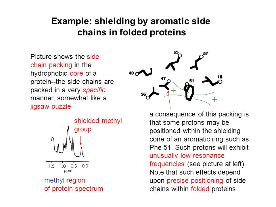 Example: shielding by aromatic side chains in folded proteins