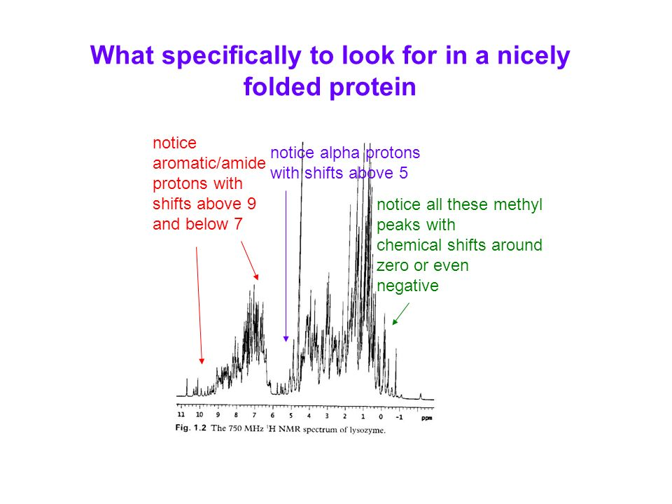 What specifically to look for in a nicely folded protein