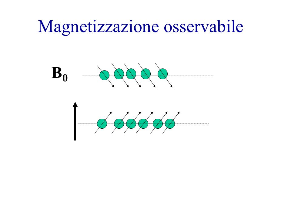 Magnetizzazione osservabile