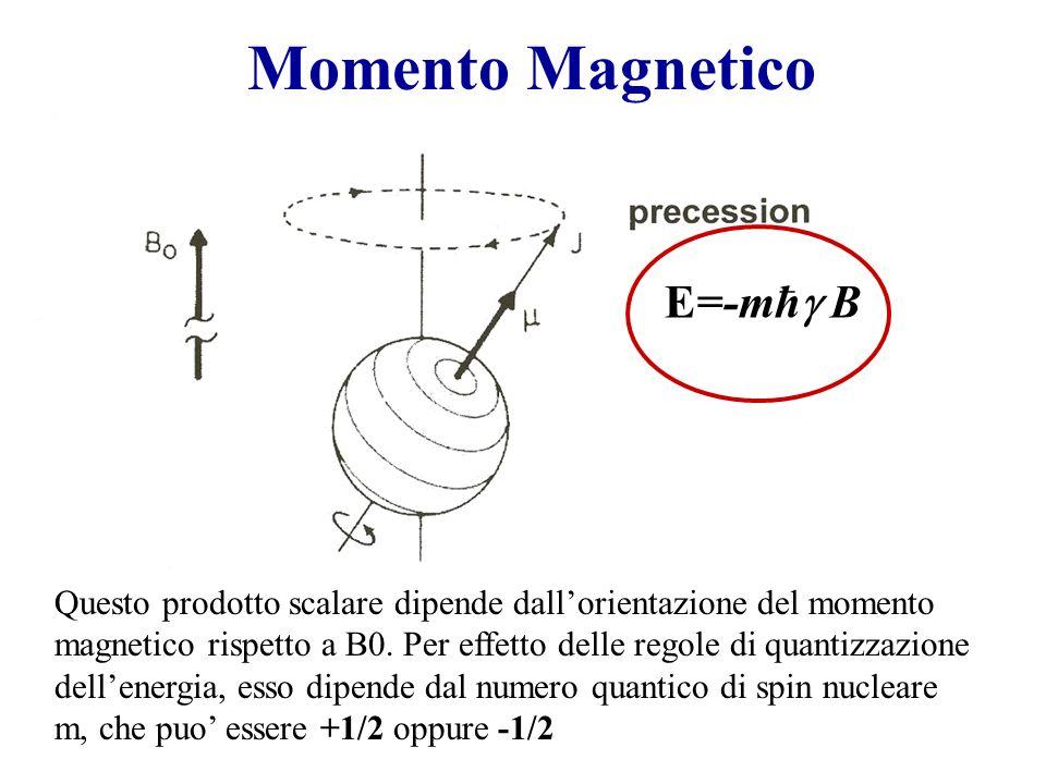 Momento Magnetico E=-mħg B