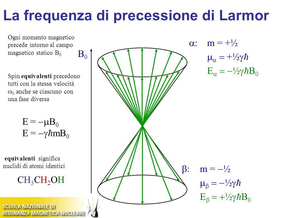 La frequenza di precessione di Larmor