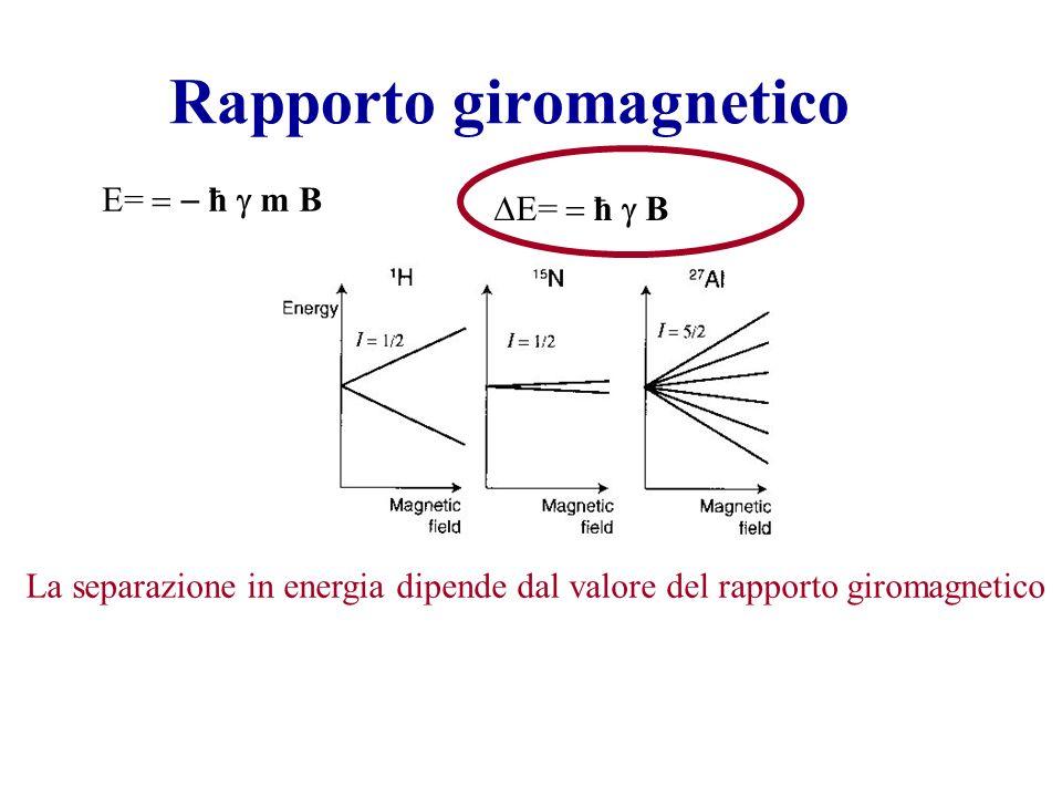 Rapporto giromagnetico