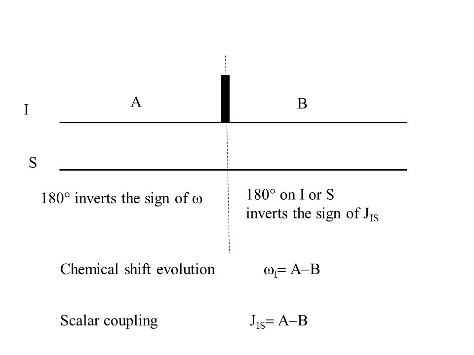 A B. I. S. 180° on I or S. inverts the sign of JIS. 180° inverts the sign of w. Chemical shift evolution wI= A-B.