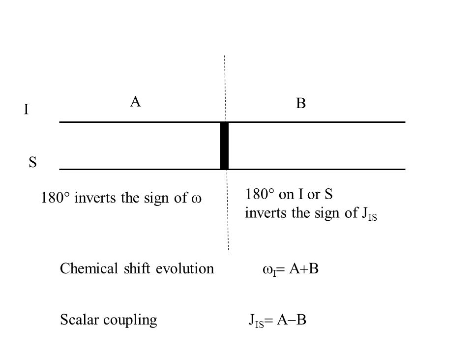 AB. I. S. 180° on I or S. inverts the sign of JIS. 180° inverts the sign of w. Chemical shift evolution wI= A+B.