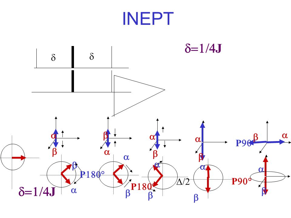INEPT d=1/4J d d d=1/4J a b P180° D/2 P90°
