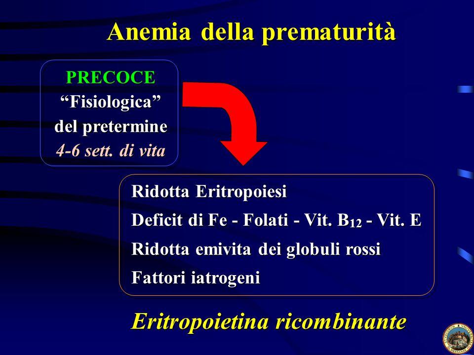 Anemia della prematurità
