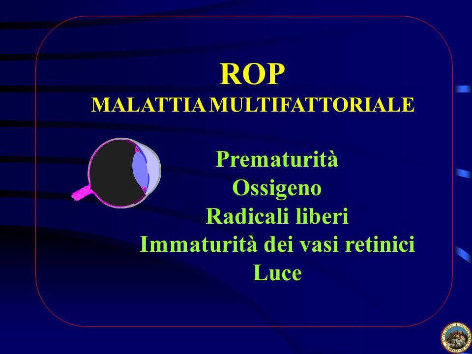 ROP MALATTIA MULTIFATTORIALE Immaturità dei vasi retinici