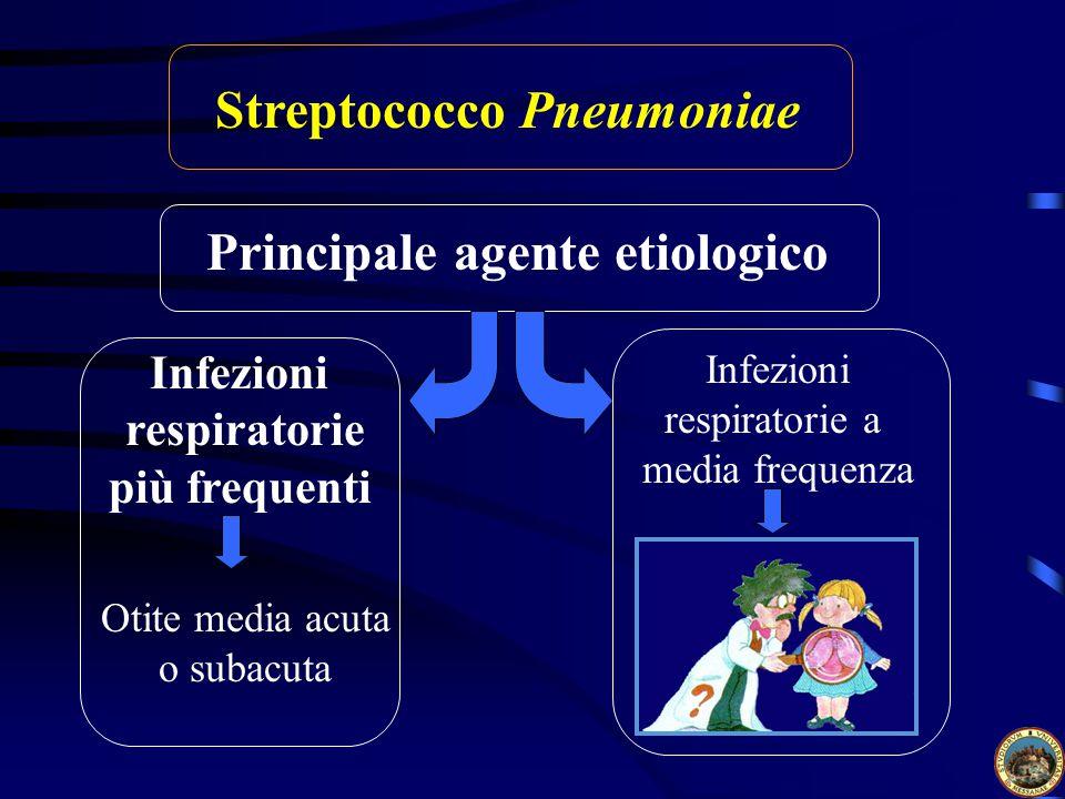 Streptococco Pneumoniae