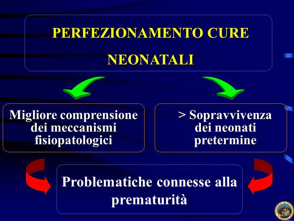PERFEZIONAMENTO CURE NEONATALI Problematiche connesse alla prematurità