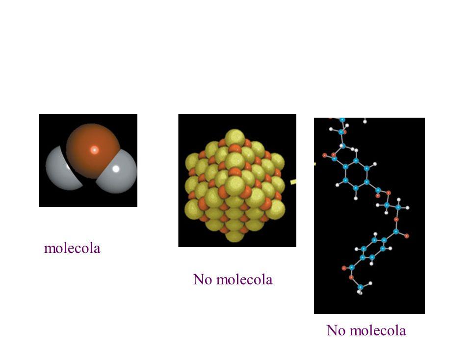 molecola No molecola No molecola