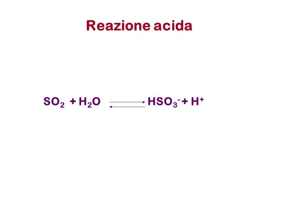Reazione acida SO2 + H2O HSO3- + H+