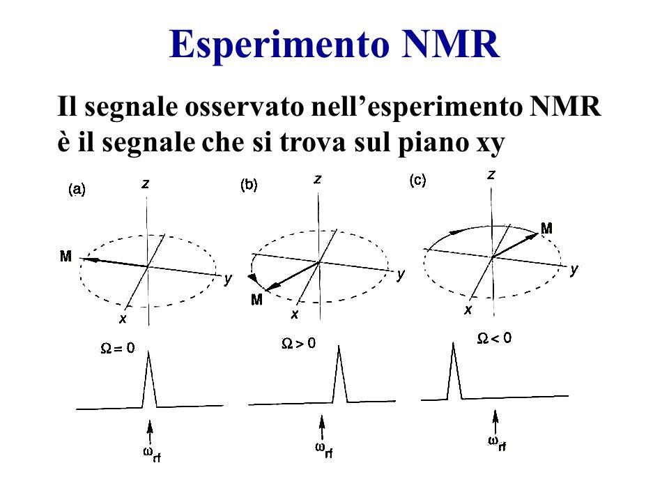Esperimento NMR Il segnale osservato nell'esperimento NMR è il segnale che si trova sul piano xy
