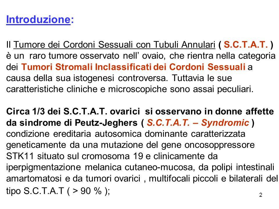 Introduzione: Il Tumore dei Cordoni Sessuali con Tubuli Annulari ( S.C.T.A.T.