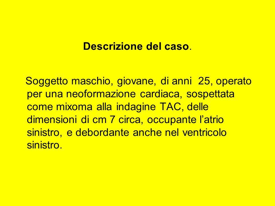 Descrizione del caso.