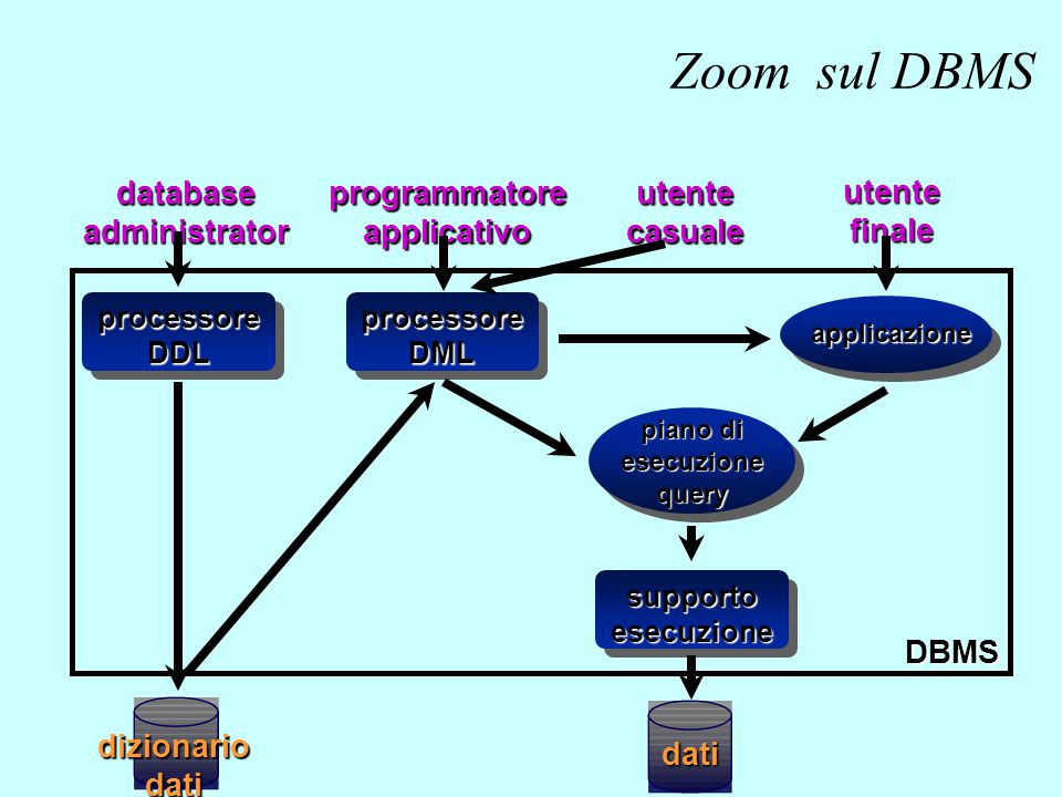 Zoom sul DBMS dati database administrator programmatore applicativo