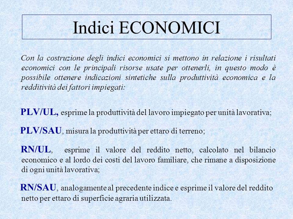 Indici ECONOMICI