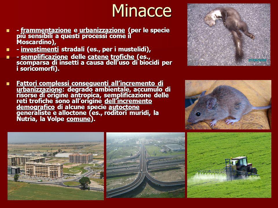 Minacce - frammentazione e urbanizzazione (per le specie più sensibili a questi processi come il Moscardino),