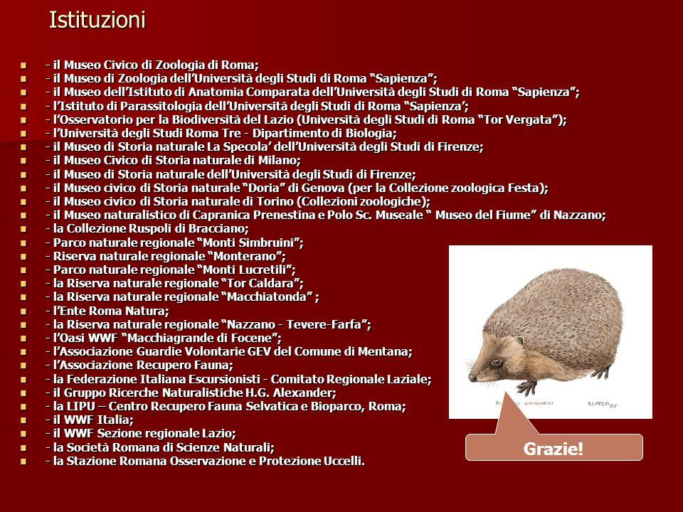 Istituzioni Grazie! - il Museo Civico di Zoologia di Roma;