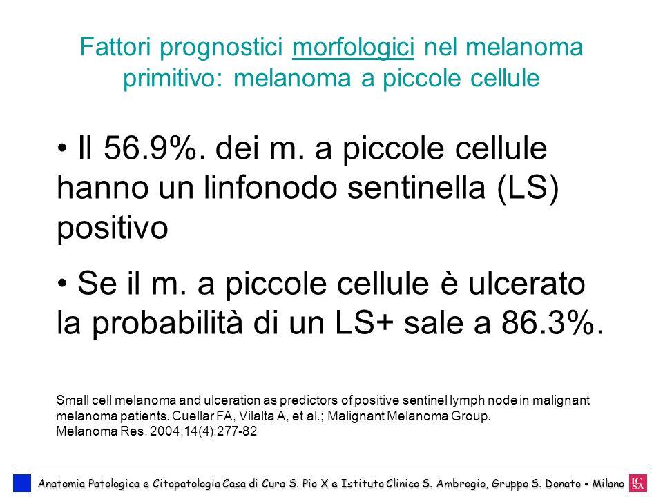 Fattori prognostici morfologici nel melanoma primitivo: melanoma a piccole cellule